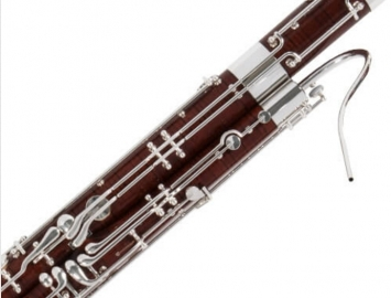 NEW Fox Professional Model 660 Bassoon