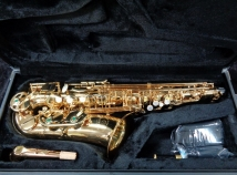 NEW Saxquest Student Level Alto Saxophone in Gold Lacquer